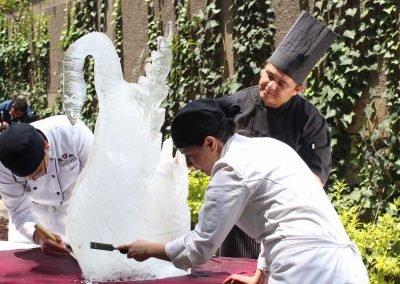 Escultura de hielo Licenciatura en Finanzas