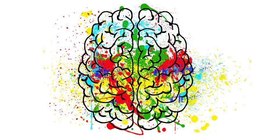 Diplomado Internacional Neuropsicología Educativa y Desarrollo